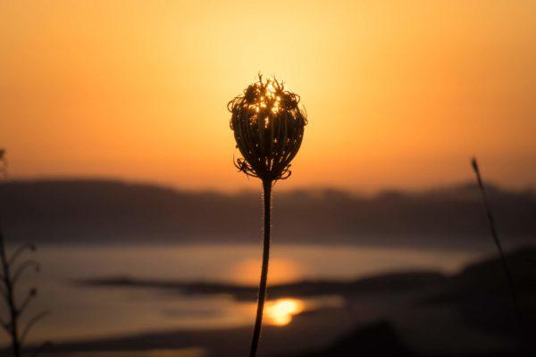 Lever de soleil en Bretagne, France